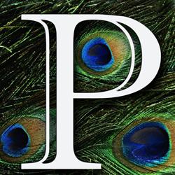 Peacock Panache